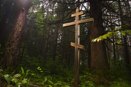 positiv: Wooden cross in the misty forest