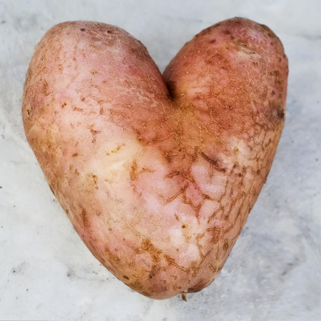 Potatoes in the form of heart photo