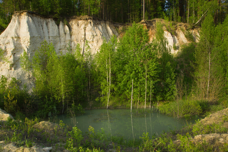 sand quarry: Summer landscape pine forest in the abandoned sand quarry Stock Photo