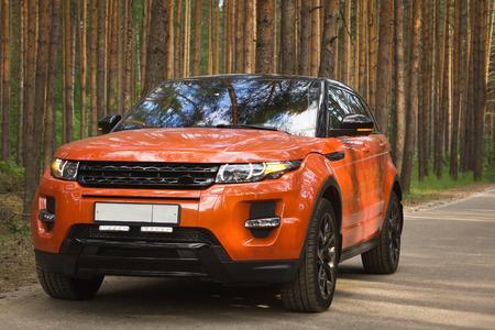 Car driving on forest road Standard-Bild