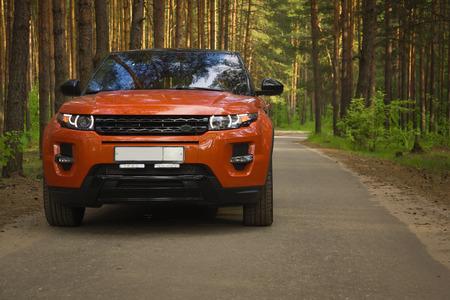 Auto rijden op bosweg