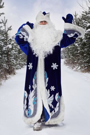 'ded moroz': Russian Christmas character: Ded Moroz (Father Frost) with gifts bag in the winter forest
