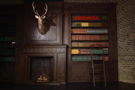 Klassieke bibliotheek met oude boeken op de planken in de Victoriaanse stijl