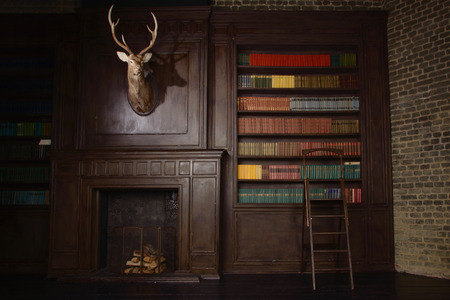Classical library room with old books on shelves in the victorian style Archivio Fotografico