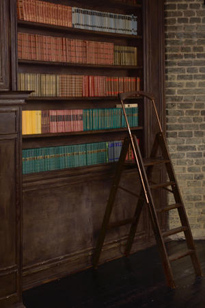 living wisdom: Classical library room with old books on shelves in the victorian style Stock Photo
