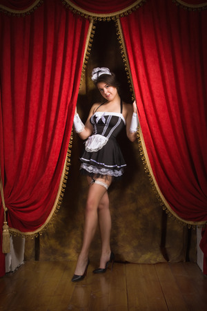 Portrait of the young sexy chambermaid. Pin up style. Stock Photo