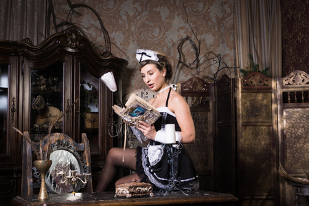Young chambermaid with duster. Pin up housework.