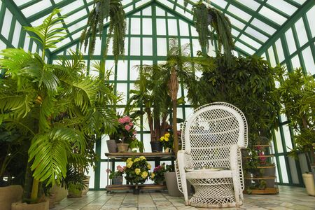 Refined interior of the greenhouse