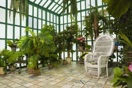 Refined interior of the greenhouse Stock Photo