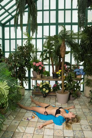 Body of a dead woman lying on the floor in the greenhouse 版權商用圖片
