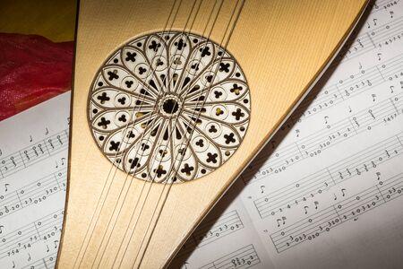 Musical still life with medieval gittern