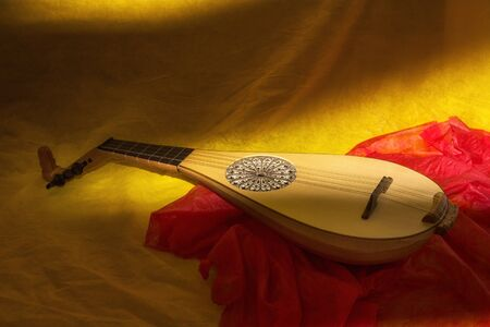 Musical still life with medieval gittern Stock Photo