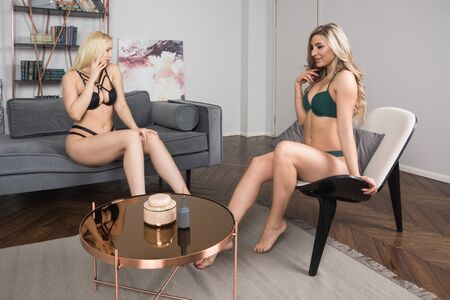 Two sexual attractive women  in erotic lace underwear posing in a boudoir.