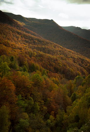 Hiking during the autumn through the beech forest of the Monastery of Hermo, Asturias, Spain.