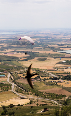 Paraglide and a swallow silhouette flying over valley in Loarre, Huesca, Spain.