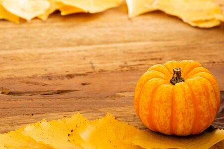 Autumn Thanksgiving Background with Orange Pumpkins and Fallen Leaves on Wooden Table Place for text