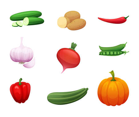 Cartoon illustration of healthy farm vegetables. Collection of elements for your design. Illusztráció