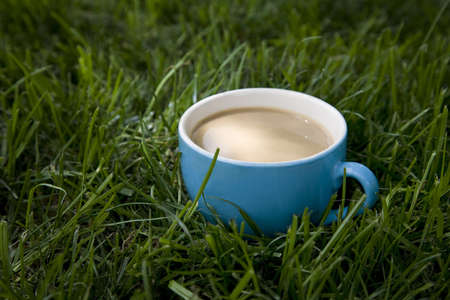Cup of coffee standing in a grass. Stock Photo