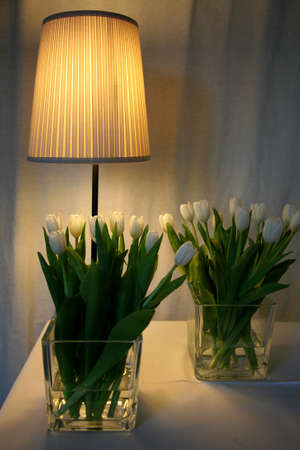 Still-life with tulips and a desk lamp. Stock Photo - 9124185