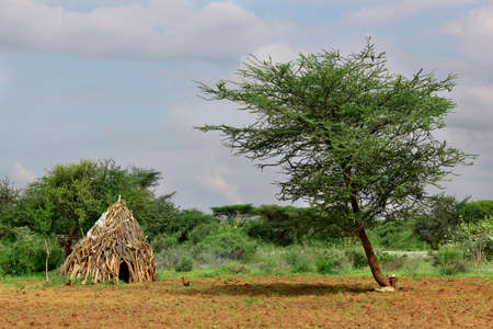 Houses of people from a tribe Hamer in Omo Rift Valley, Ethiopia. Stock Photo