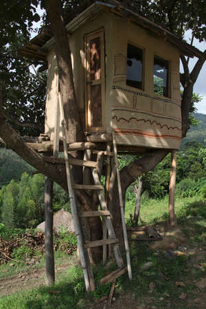 ethiopian: The traditional Ethiopian house on a tree