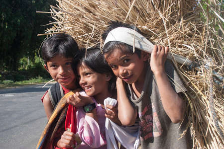 pauper: POKHARA, NEPAL - NOVEMBER 04, 2005: Nepalese children carry hay at the traditional way.
