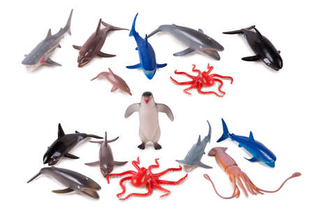 oceanic: Isolated oceanic animal model toys on white background