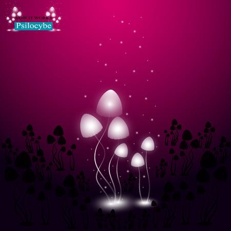hallucinogenic: The shining hallucinogenic mushrooms of Psilocybe group.