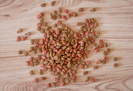 feed: Dry cat food is scattered on a wooden board