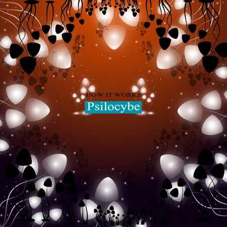 hallucinogenic: The shining hallucinogenic mushrooms of Psilocybe group.