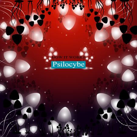 spores: The shining hallucinogenic mushrooms of Psilocybe group.