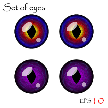 clarity: Beautiful pupils of eyes. Vector eyes collection.