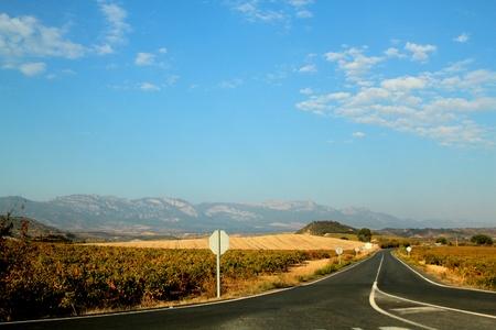 naturaleza: COUNTRY ROAD