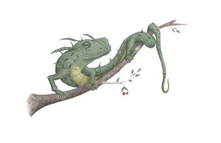 vivarium: lizard sitting on a tree branch
