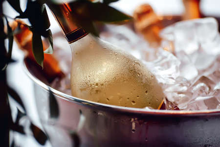 Bottle of white wine sparkling in a bucket of ice, leaves, close-up, iny, droplets, condensation, bokeh, blurred background Foto de archivo