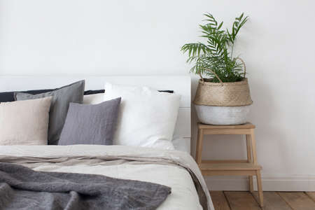 bed sheet: Bedroom interior bed and bedside table with plant