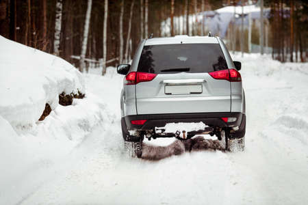 no skid: Driving SUV car in winter on forest snow road