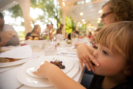 Charming child chewing grapes from big round plate pitting to mouth and looking along at served long table big family feast