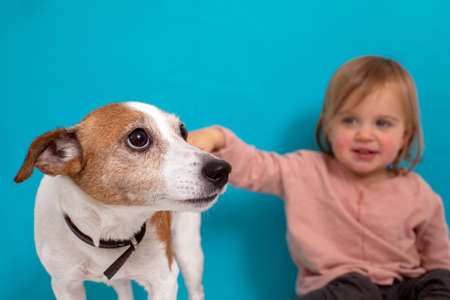 Happy baby girl and dog sit on a blue background. Child stroking pet Stockfoto
