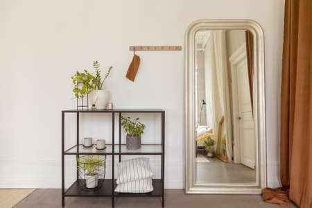 Potted plants and pillows placed on shelves near stylish mirror in cozy room at home