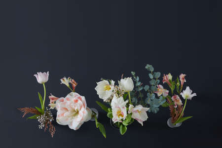 Assorted blossoming flowers with wavy gentle petals growing on thin stems with green leaves Stockfoto