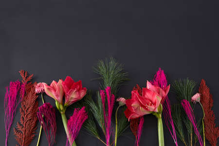 Top view composition of bright red colored flowers and green stems arranged in row on black background Stockfoto