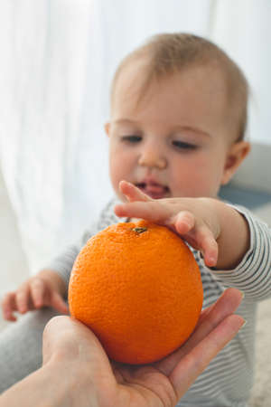 Cute baby girl are sitting whith orange white background interior. Funny child explores the fruit Stockfoto
