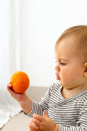 Cute baby girl are sitting with mandarin white background interior. Funny child explores the fruit