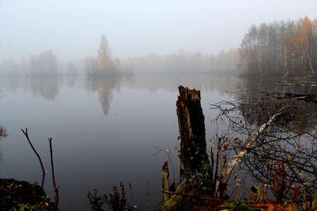 quietude: tranqüila lago