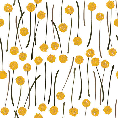 billy: messy billy balls craspedia beautiful yellow flowers on white background botanical seamless pattern