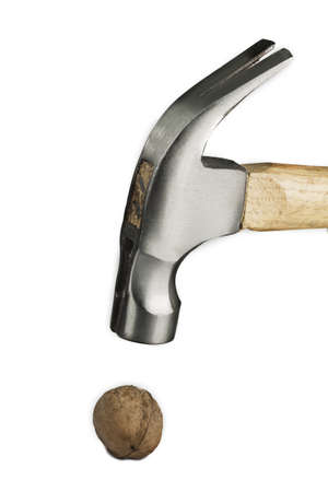 Photo of a walnut broken by a hammer photo