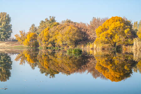 Photo of an autumn landscape - the river bank