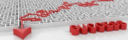 maze success