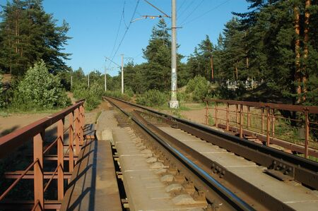forest railroad: Railroad in the forest